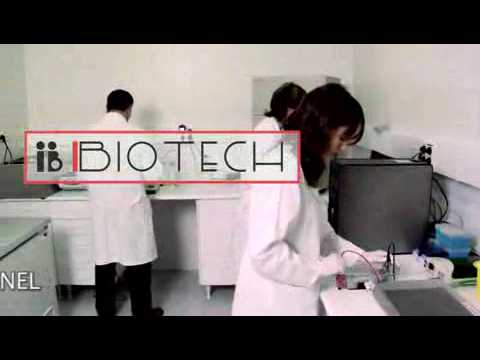 IB BIOTECH. Genetics and Molecular Biology. Instituto Bernabeu Group