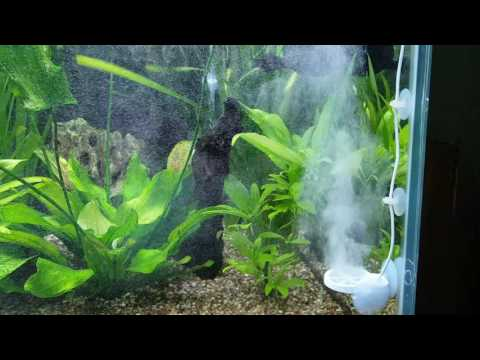 TWINSTAR aquarium sterilizer - Eliminador de Algas - Aquario - Portugues