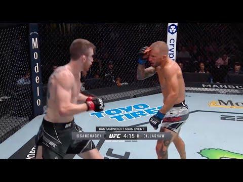UFC on ESPN 27: Sandhagen vs. Dillashaw – highlights
