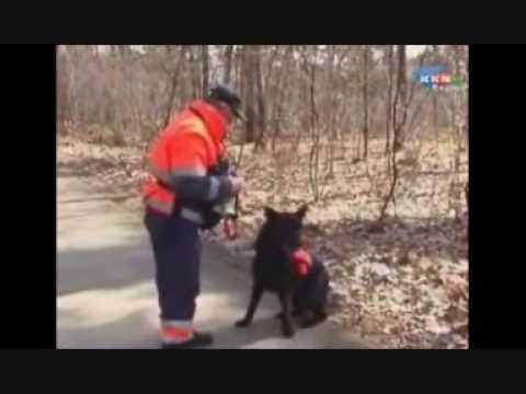 Search en Rescue Dogs Zoekactie 22-03-2009 Wanroij