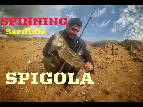 Putin su pesca subacquea