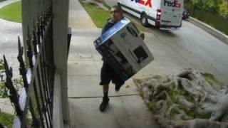 Deliveries gone wild
