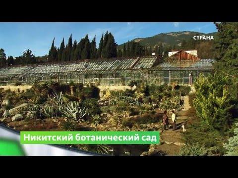 Природа. Никитский ботанический сад