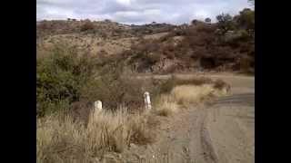 preview picture of video 'Caracoles de Soto: Horacio NP 650'
