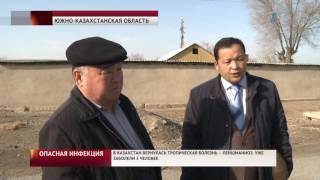 В Казахстан вернулась опасная инфекция. Уже заболели 5 человек