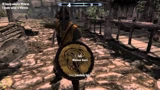 Elder Scrolls V Skyrim in a nutshell.