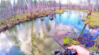 Чем хороша рыбалка на малых реках