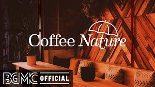 Coffee Nature: Mellow Jazz Music on a Rainy Night - Coffee Shop Music Ambience