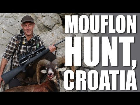 Mouflon Hunt, Croatia