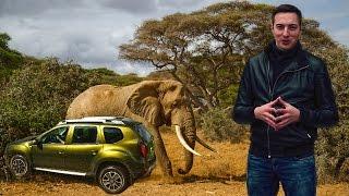 Сможет ли Рено Дастер и ВЕДРО за 100 тысяч рублей проехать Африку? Проект начинается сегодня.