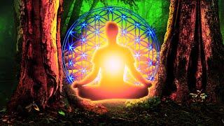 528Hz RAISE Vibration | Be Positive Minded - Reiki Healing To Cleanse Negativity | Meditation Music