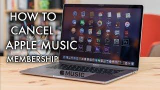 How to Cancel Apple Music Subscription on Mac - Mac Basics