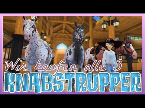 Wir KAUFEN alle 3 KNABSTRUPPER 🐴💙 Star Stable Pferdekauf [SSO]
