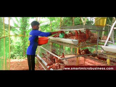 , title : 'Smart Mini poultry cages system