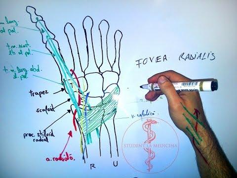 Ce injecții pentru dureri de genunchi