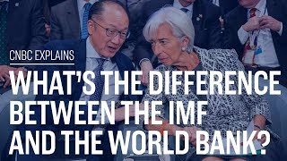 What's the difference between the IMF and the World Bank? | CNBC Explains | Kholo.pk