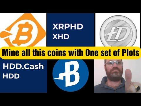 Cum să trimiteți bitcoin la paypal