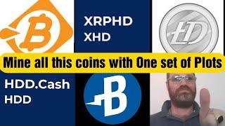 Multi Mining Burst - BitcoinHD - Litecoin HD - HDD.Cash - XRPHD With one Plots - Alpha One