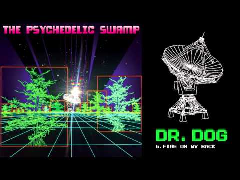Dr. Dog -