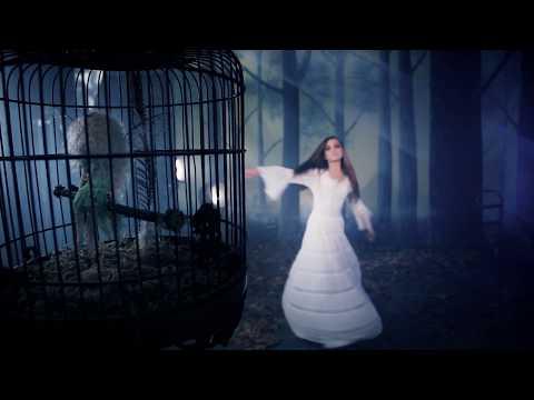 Secret Love (2011) (Song) by Stevie Nicks