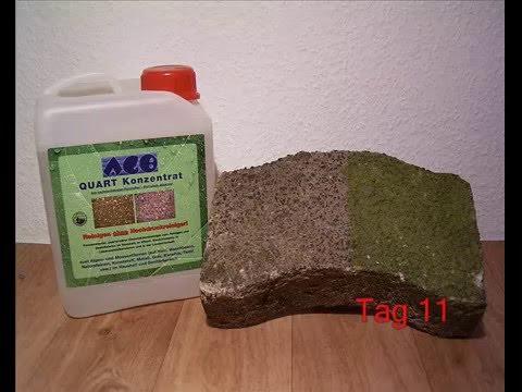 Grünbelagentferner AGO Quart - Die Wirkung im Zeitraffer