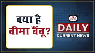 क्या है बीमा बैंबू? - Daily Current News