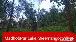 preview picture of video 'মাধবপুর লেক, শ্রীমঙ্গল সিলেট'