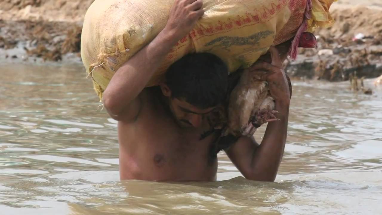 Shared humanity - the flood survivors of Pakistan