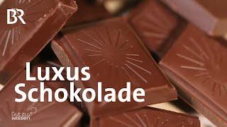 Bio Schokolade: Fairer Handel mit Kakaobohnen | Gut zu wissen | BR