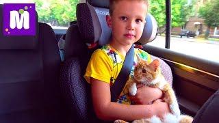 Кошечка Мурка и Макс едут в гости ВЛОГ едем в Киев ДжекПот ЧЕЛЛЕНДЖ и Пушка - Пердушка Миньоны