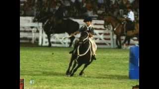 preview picture of video 'PEDRITO BARBERO DESTREZAS GAUCHAS EN JM'