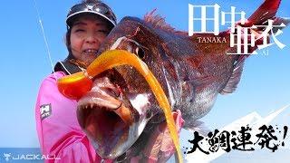 田中亜衣/ビンビン玉シリーズで大鯛連発 (京都丹後)