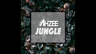 Ahzee   Jungle