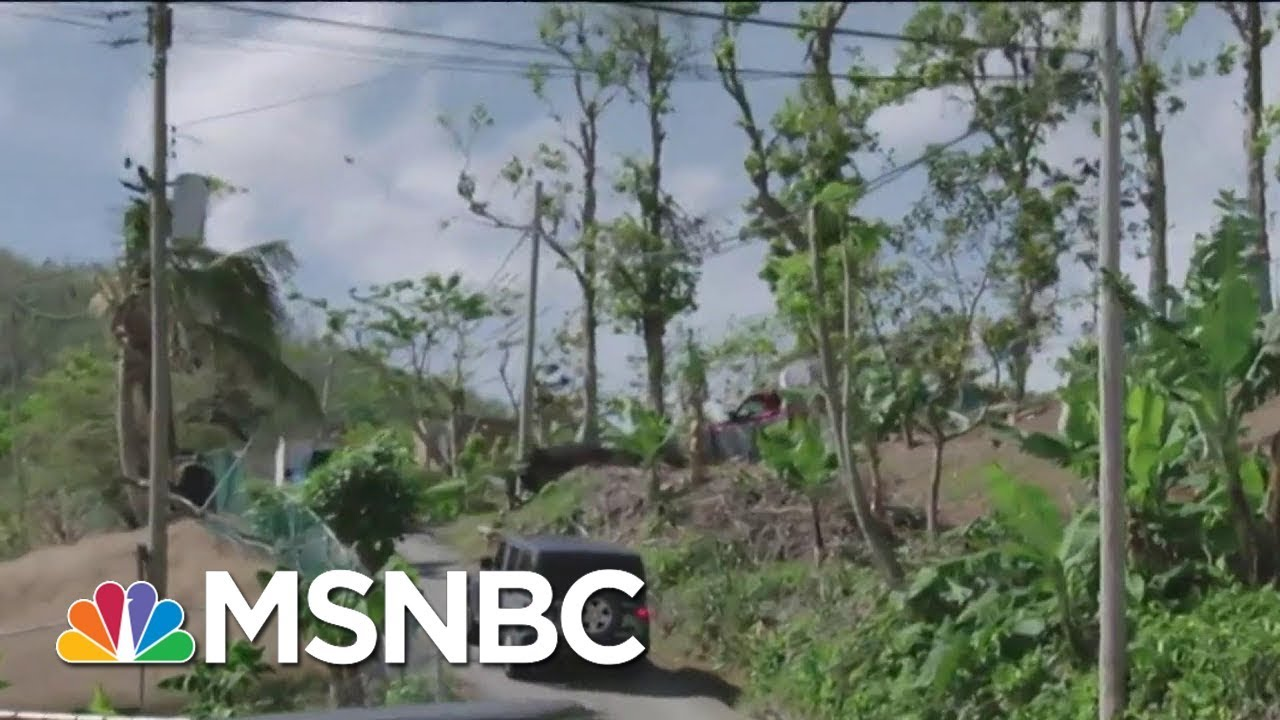 Puerto Rico Still Without Power Three Months After Hurricane Maria | Velshi & Ruhle | MSNBC thumbnail