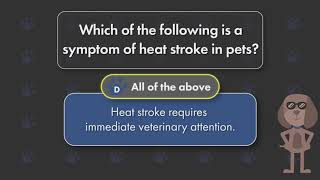 Heat Stroke and Your Pet