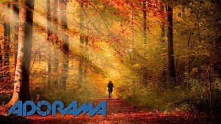 Autumn 15 Minute Photo Challenge: Take and Make Great Photography with Gavin Hoey