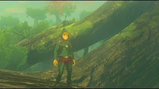 Zelda: Breath of the Wild - Tingle's Outfit Locations (EX Treasure: Fairy Clothes)