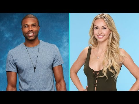'Bachelor in Paradise' Investigation Over; Warner Bros. Concludes No Misconduct