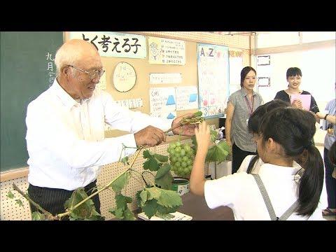 「マスカット・オブ・アレキサンドリア」生産者が小学校で食育の授業 岡山市