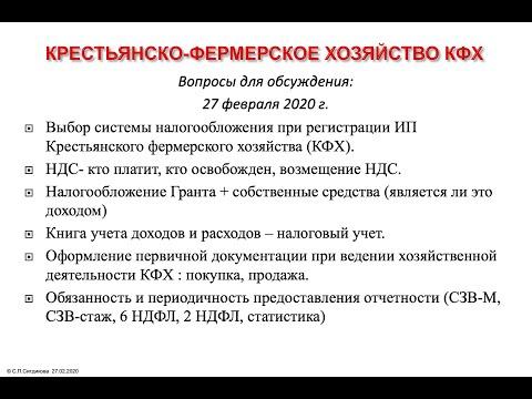 Светлана Ситдикова Выбор системы налогообложения при регистрации ИП