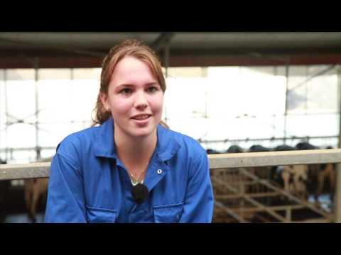 Groene Welle 2 -  Voorlichtingsfilm