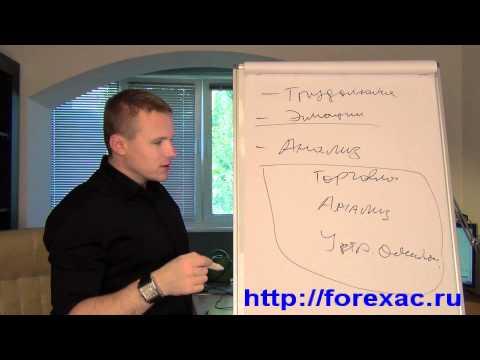 Forex торговая система могучий аллигатор