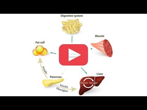Perché non dovresti perdere peso
