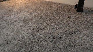 Carpet Vs Wooden Floors
