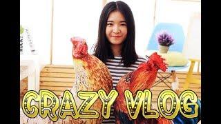 Crazy Vlog #15 Rooster vs Kids | Петух против Детей
