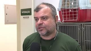Hospital veterinário em Santos é referência no tratamento e reabilitação de animais silvestres