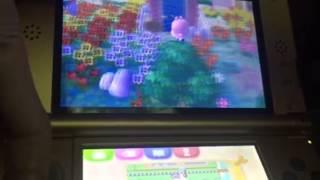 EJ: Animal Crossing New Leaf Part 30 Bretha's Time Capsule