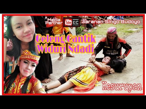 Download Bahaya Kesruduk! Celeng Cantik Ndadi || Seni Budaya Jaranan | Simo Barong HD Mp4 3GP Video and MP3