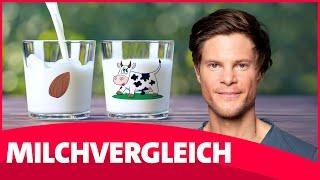 Milch: Kuh, Hafer, Soja, Mandel, Reis – Was ist besser? | Faktencheck