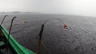 """Рыбалка Осенью """" ФАРВАТЕРНЫЕ ЛЕЩАТНИКИ """". Два дня рыбалки на Леща, Волга. Гроза, Уха, Ночлег в Лесу."""